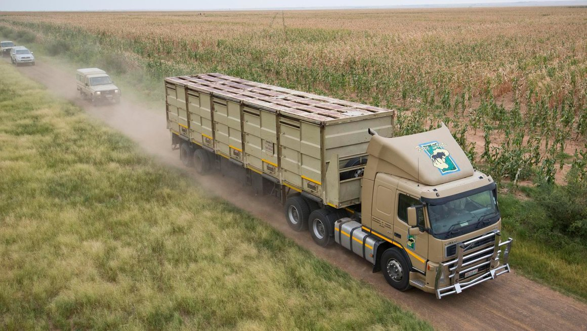 Volvo FM in nature reserve.